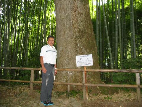 hiraizumi.no2.JPG